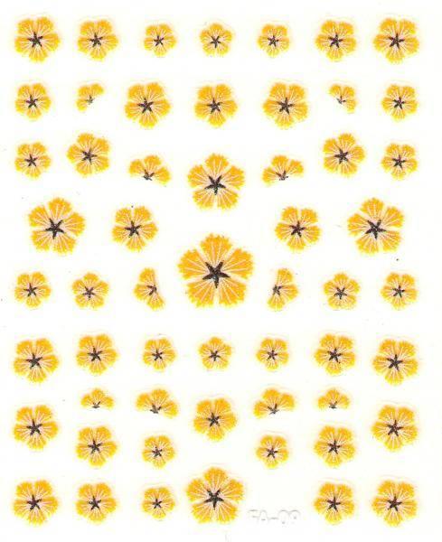 Flower Stickers - Čakanka žltá