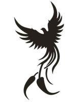 Tattoo šablónka 51-153