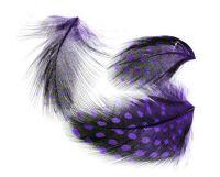 Pierka - Bodkované fialové