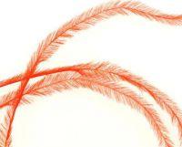 Pierka - Tenké oranžové
