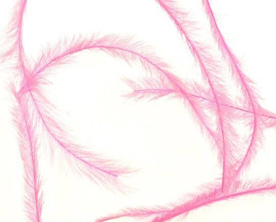 Tenké farebné pierko na zdobenie nechtov