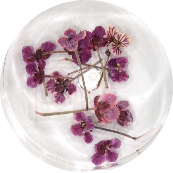 Sušené kvety DF3