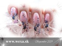 Nail Tattoos - Fairy nocturne -11