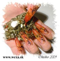 Tribal Stamping Nail Art platnička - T06