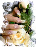 Sušené kvety strapaté - AP white