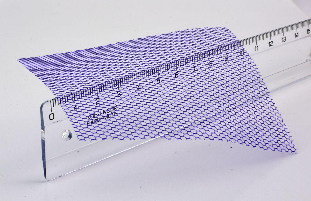 Sieťka očková č.55 - slivka
