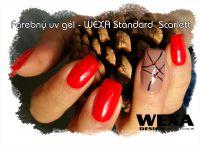 Galéria prác WEXA