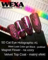 5D Cat Eye Holographic GelLOOK - 01