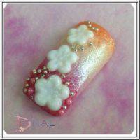 3D formička - Prunus mume 064