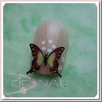 3D formička - Butterfly 073