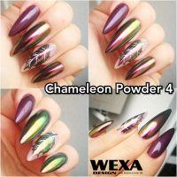 Chameleon Chrome Powder 4