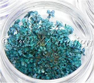 Sušené kvety strapaté - AP turkys