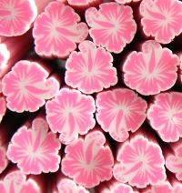FIMO tyčinka - Hybiscus krikľavo ružový