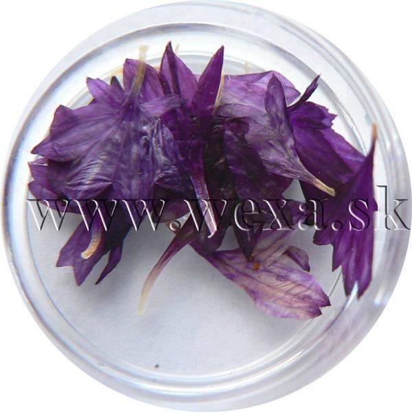 Sušené kvety - Kalíšky 9