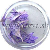 Sušené kvety - Kalíšky 11