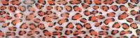 Mušle pláty - Gepard